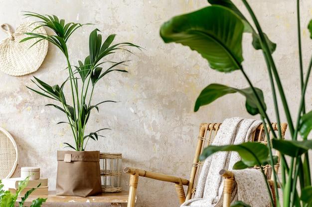 Composizione neutra dell'interno del soggiorno con poltrona in rattan, molte piante tropicali in vasi di design e decorazioni