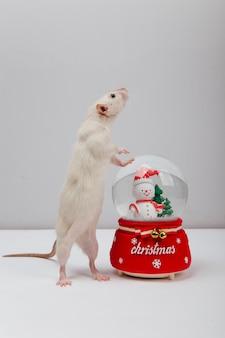 Una palla di capodanno e un topo bianco