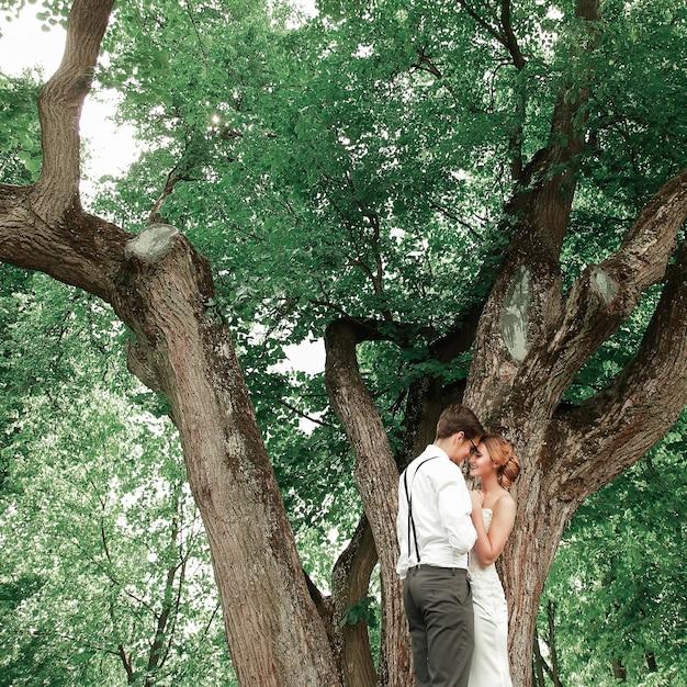 Sposi in piedi vicino a un grande albero in espansione