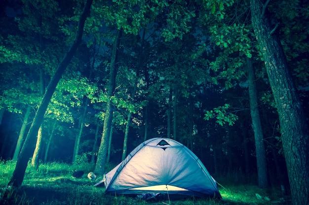 Campeggio notturno nella foresta fogliare