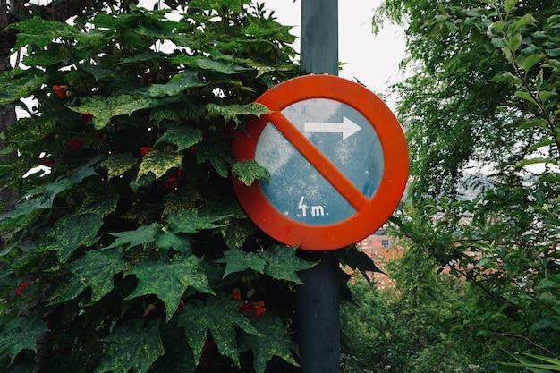 Nessun segnale di parcheggio sulla strada