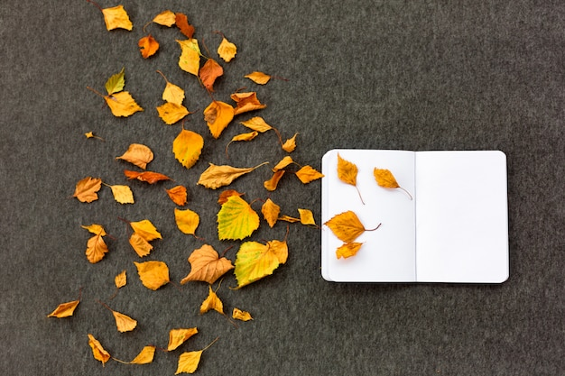 Taccuino e foglie di autunno su fondo grigio. il concetto di ispirazione autunnale e creatività.