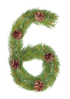 Numero 6 - fatto di albero di abete di natale su un bianco isolato