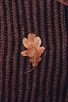 Foglia di quercia su struttura marrone lavorata a maglia