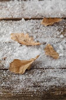Foglie di quercia nella neve