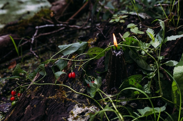 Divinazione esoterica occulta e concetto di wicca halloween vintage background