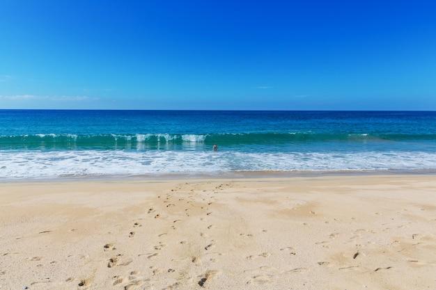 Spiaggia dell'oceano
