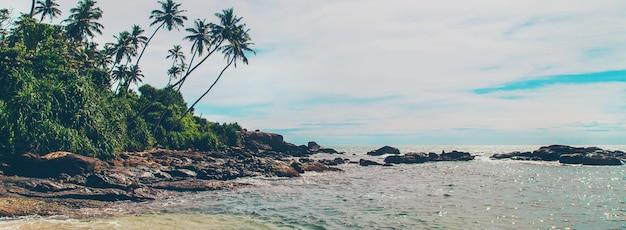 Oceano sri lanka. natura e palme
