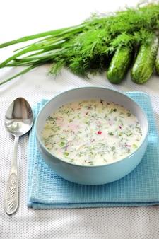 Okroshka - zuppa fredda russa tradizionale con cetriolo fresco, uova sode e aneto