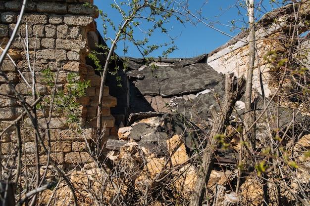 Vecchia casa abbandonata in rovina il tetto della casa è crollato intorno alla casa sono cresciuti alberi