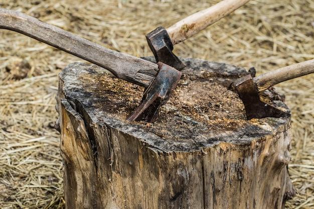 Vecchia ascia incastrata in un ceppo