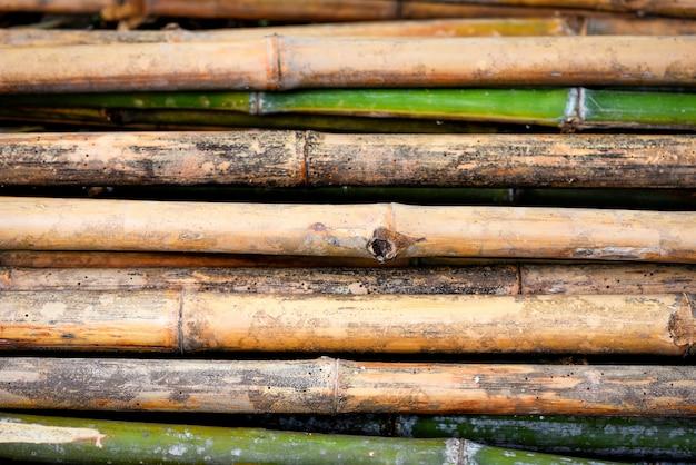 Vecchia parete di bambù della natura del fondo della parete
