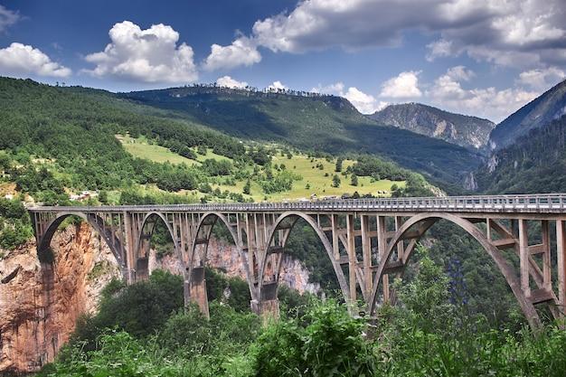 Il vecchio grande ponte di durdevica e la fantastica vista sulla gola del fiume tara è il più grande canyon d'europa...