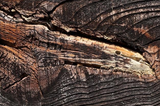 Vecchie tavole nere dalla parete di un vecchio edificio in legno di close-up