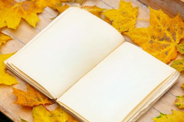 Vecchio libro su un tavolo con foglie di acero gialle intorno.