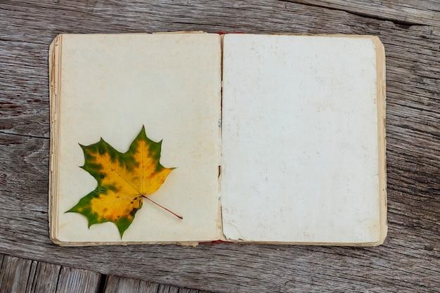 Vecchio libro con pagine bianche e foglia d'autunno