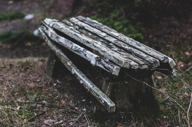 Vecchio banco rotto nella foresta con vernice scrostata. piccolo focus all'inizio della panchina. colorato. orizzontale.