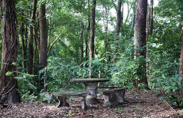 Vecchio sedile e tavolo in cemento per rilassarsi sul parco della giungla