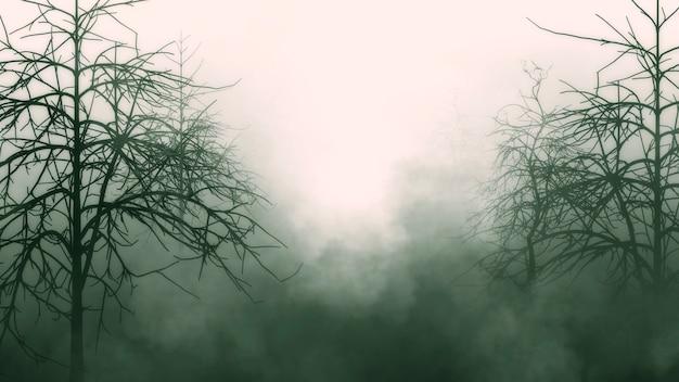 Vecchia foresta profonda, alberi spaventosi, sfondo mistico grunge