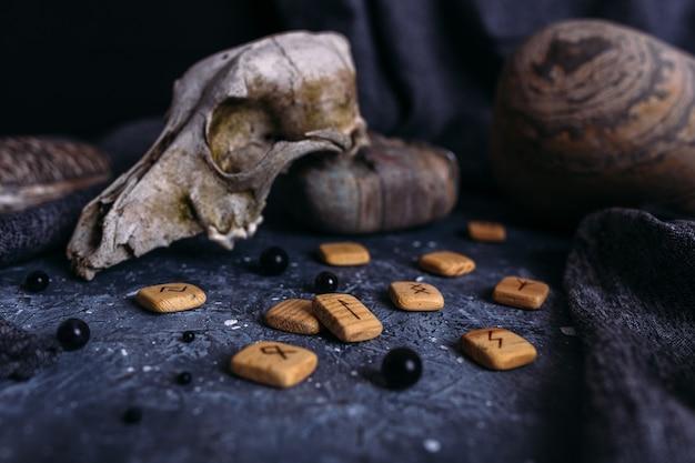 Vecchio teschio di cane rune e pietre in legno sul tavolo delle streghe