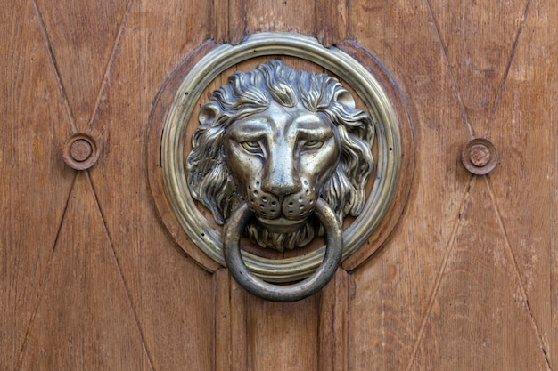 Vecchia maniglia della porta a forma di leone di metallo