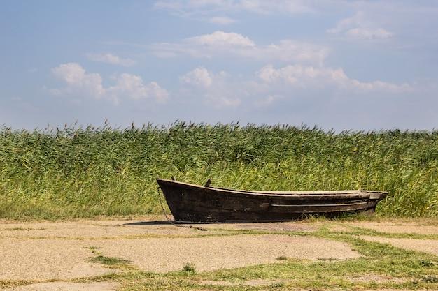 Vecchia barca da pesca su asfalto sullo sfondo di canne