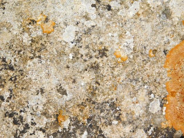 Vecchia trama di marmo