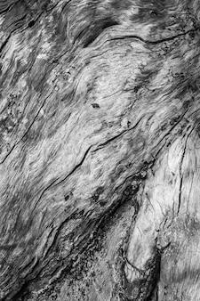 Vecchia struttura di legno naturale, sfondo di legno vecchio, concetto di design