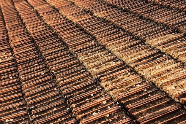 Vecchie piastrelle arancioni ricoperte di muschio verde arrugginito tetto in mattoni rossi
