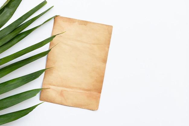 Vecchia carta con foglie di palma tropicale sulla superficie bianca