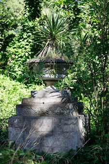 Vecchia aiuola in pietra a forma di vaso nel parco. foto di alta qualità