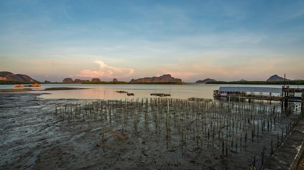 Vecchia struttura nel mare di fango