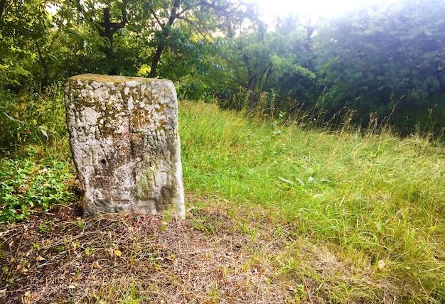 Vecchia lapide con iscrizioni slave incise tra alberi verdi in un vecchio cimitero abbandonato