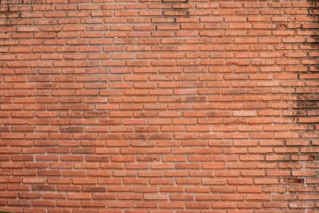 Vecchio fondo e strutture del muro di mattoni dell'annata