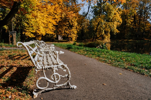 Vecchia panca in legno bianco nella sosta di autunno