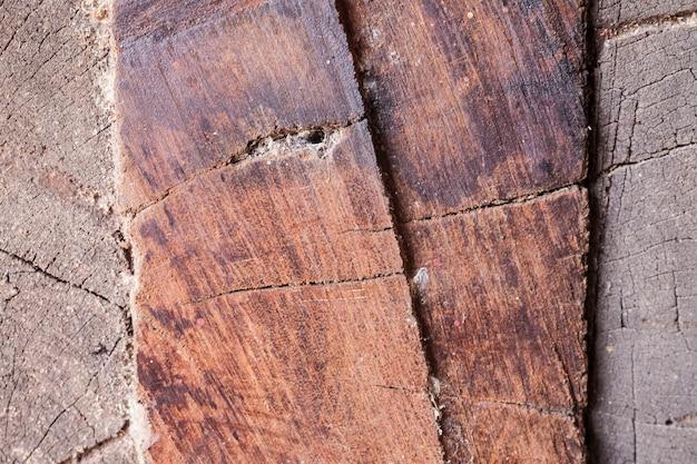 Vecchio legno texture di sfondo Foto Premium