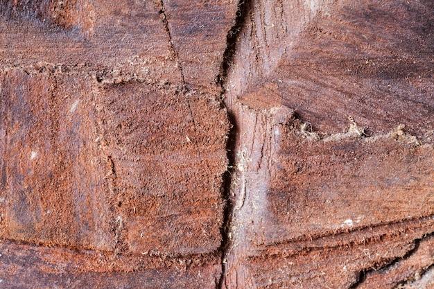 Vecchio legno texture di sfondo