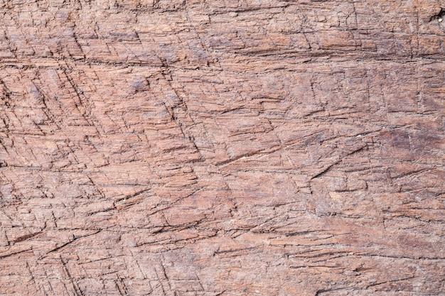 Vecchia struttura di legno del fondo.