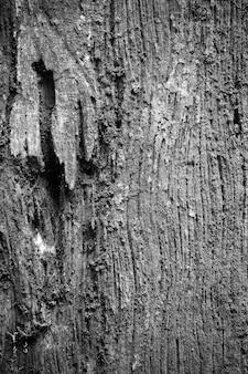 Sfondo di legno vecchio.