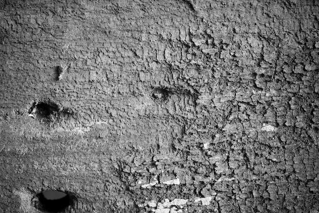 Vecchio fondo di legno.