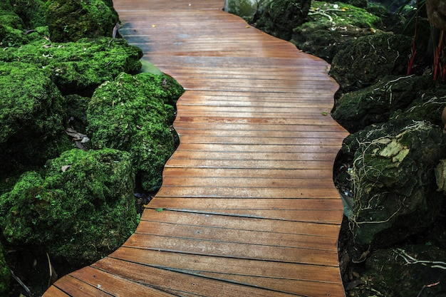 Vecchio ponte di legno nel parco naturale