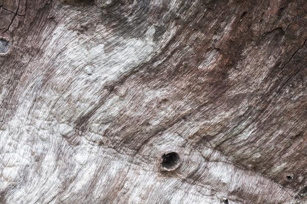 Dettaglio di struttura in legno vecchio