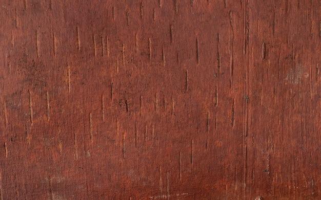 Modello naturale di superficie del fondo dell'albero di legno vecchio