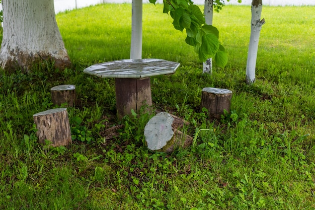 Vecchia panca di legno e tavolo sotto un albero in riva al fiume in estate