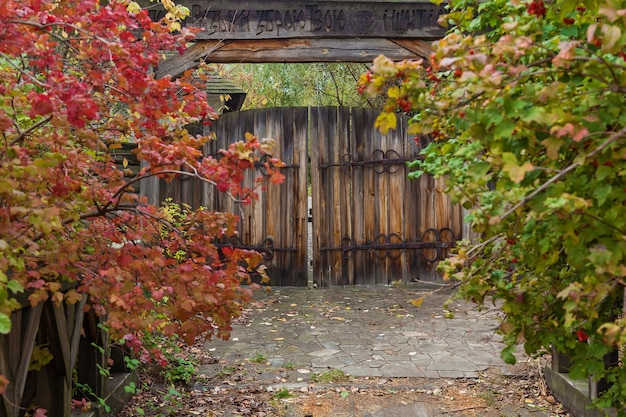 Vecchie porte in legno con cerniere e serrature in ferro battuto. cerniere in metallo forgiato sulle ante in legno. mamaev sloboda