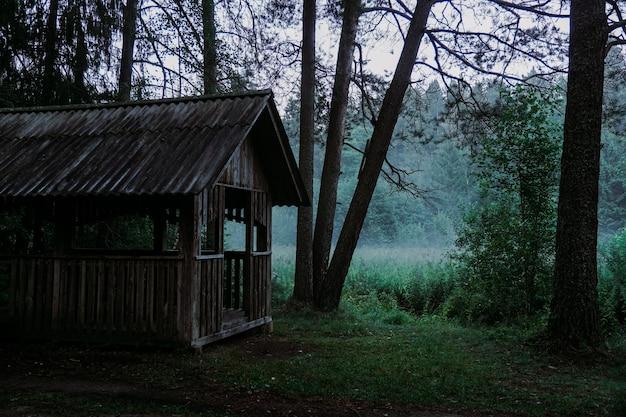 Un vecchio gazebo in legno in una foresta verde. nebbia sulla palude sullo sfondo