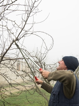 Uomo anziano con berretto di lana potatura alberi da frutto con cesoie in una giornata nebbiosa