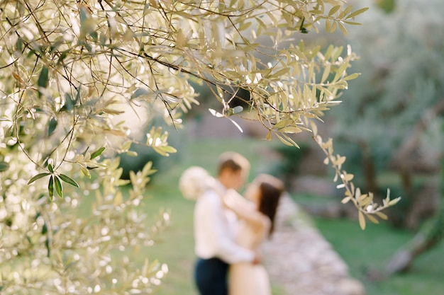 Ramo di olivo sullo sfondo di abbracciare la sposa e lo sposo