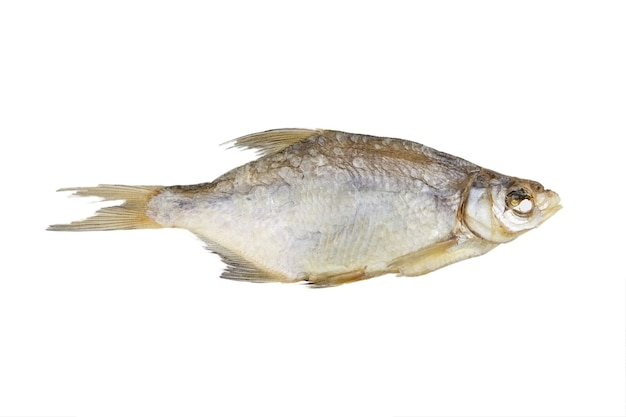 Un pesce secco isolato su bianco