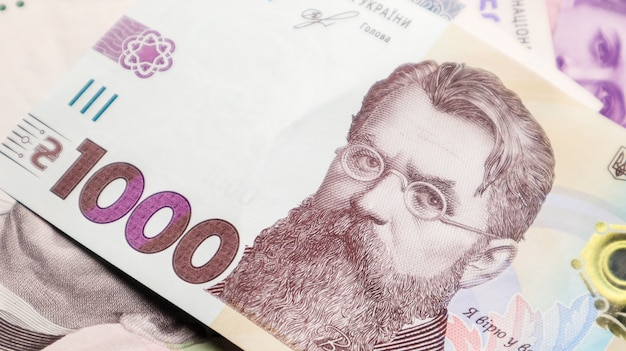 Una nota cartacea in 1000 grivnie. ritratto di vladimir ivanovich vernadsky per 1000 grivnie su una banconota ucraina. soldi ucraini.